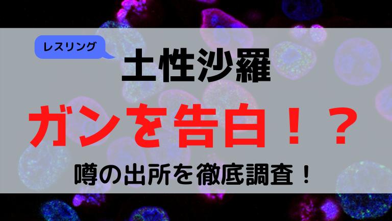 土性沙羅ガン